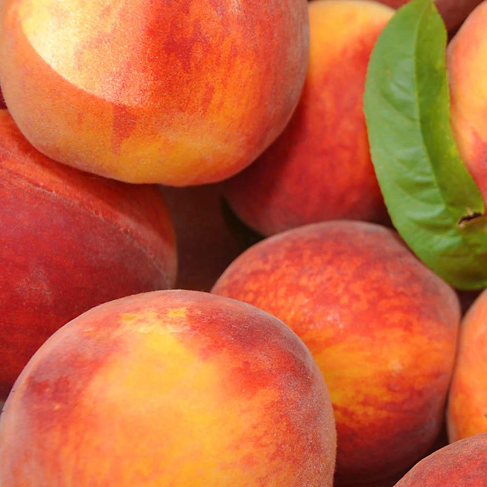 peaches-pile